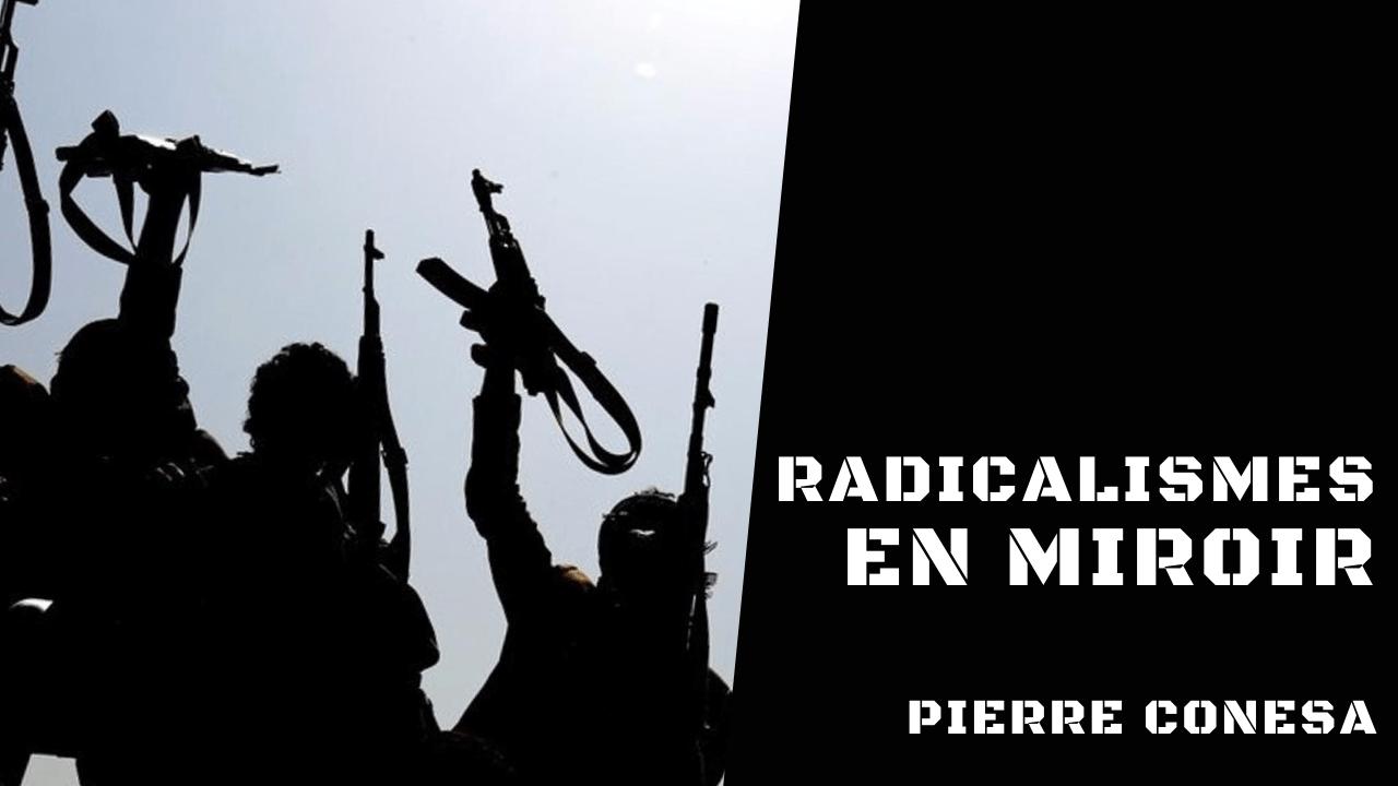 Géopolitique des radicalismes